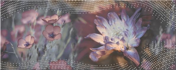 Azori Авелано Верано 582842004 декор для плитки (разноцветный), 50.5х20.1 см